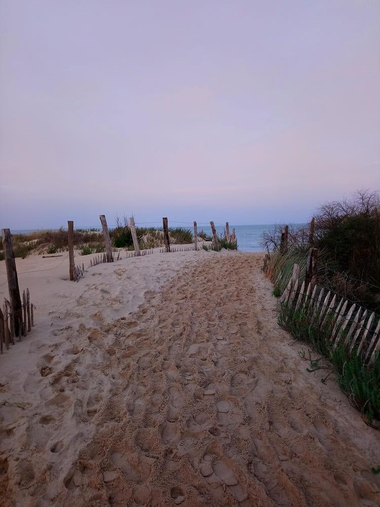 Au bout du petit chemin entre mer et foret pour acceder à la plage de Trousse chemise sur l'île de Ré au couché du soleil à Noel- chambre d'hôtes Les Fillattes