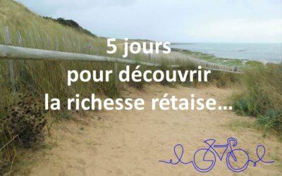 5 jours de road trip sur l'île de Ré : Découvrez la richesse rétaise