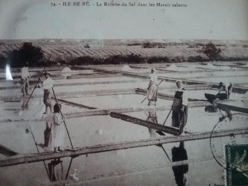 Le sel de l'ile de ré-une histoire de famille depuis la nuit des temps - Les Fillattes - Maison d'hôtes Ile de Ré
